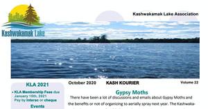 Kash Kourier Newsletter