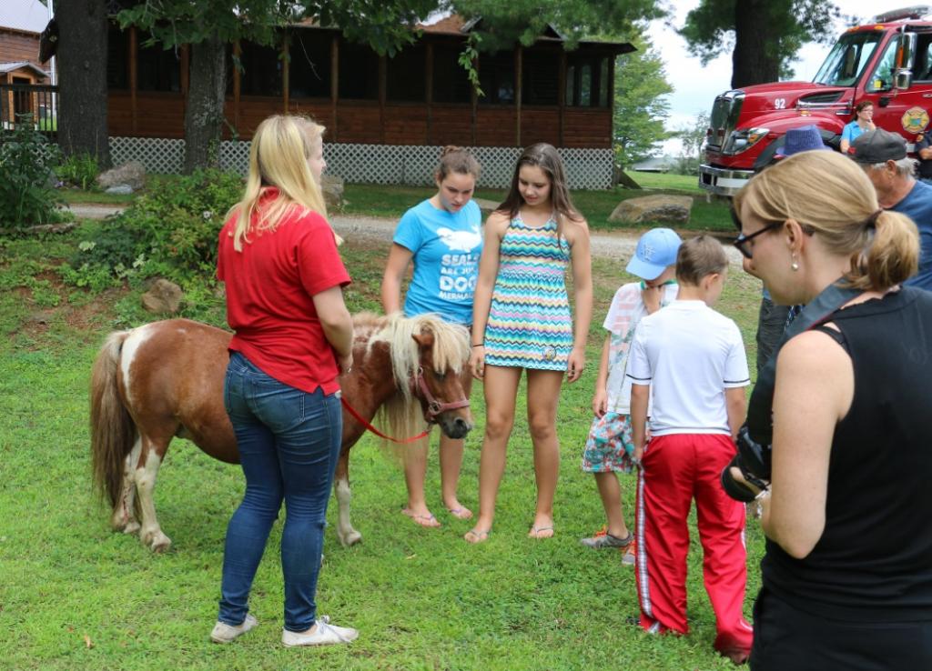 KLA Annual BBQ 2015 Animal Rescue Farm